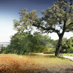 Apple Campus 2 -6